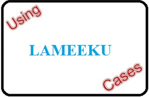 Using Lameeku Cases