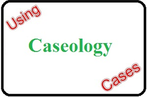Using Caseology Cases